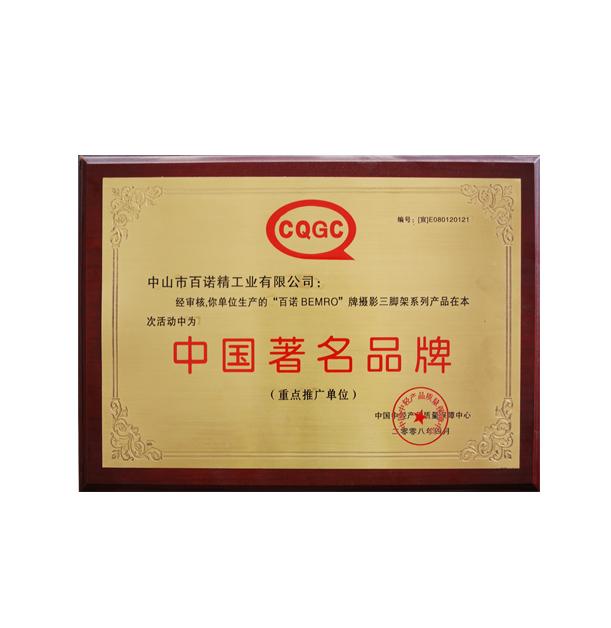 中国著名品牌08年
