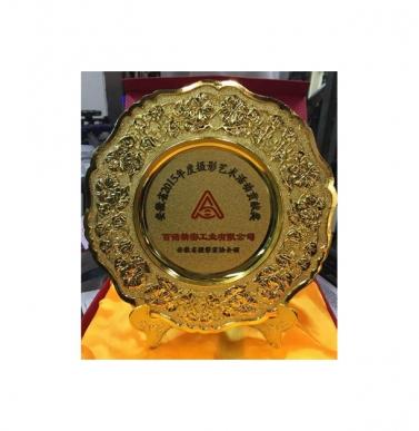 荣获安徽省2015年度摄影艺术活动贡献奖