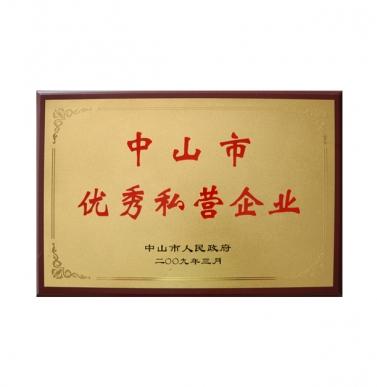 中山市优秀私营企业